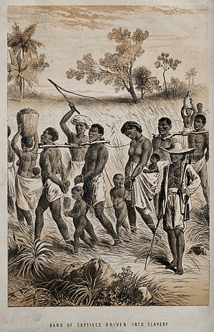 a research on zulu and asian indians The attack on indians by zulus in january 1949 has generated a great deal of debate about the relationship between the two zulus attack indians in durban home dated event zulus attack indians in durban human sciences research council (hsrc), democracy and governance.